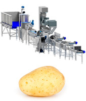 potato-processing-line-