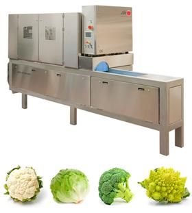 Máquina corte verduras