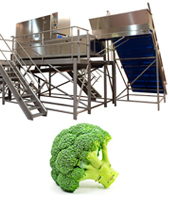 línea procesado brócoli