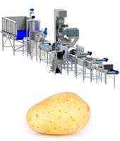 maquina-procesado-patata