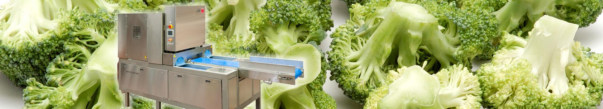 Maquinaria para cortar brócoli
