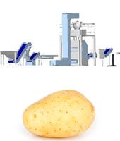 Línea procesado completo de patata