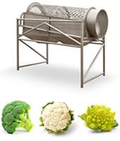tambor-calibrador-brocoli-coliflor-romanescu