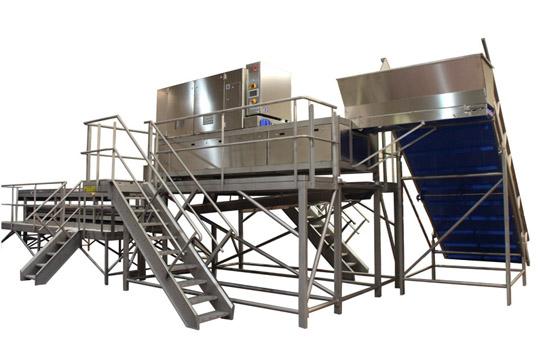 procesado-brocoli-maquina