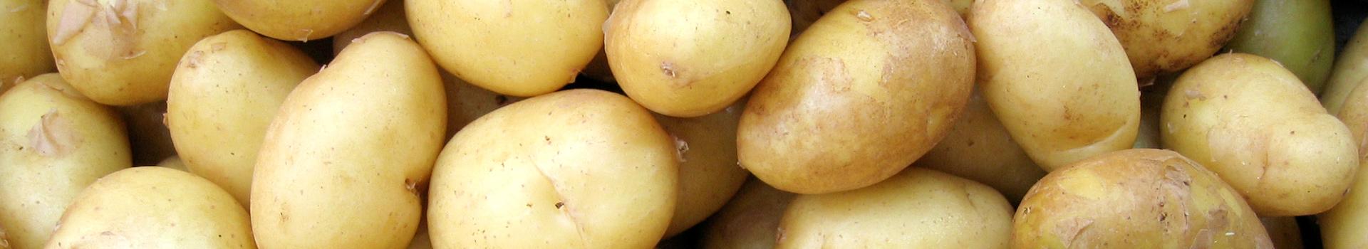 Maquinaria cortada de patatas